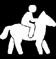 horse-icon